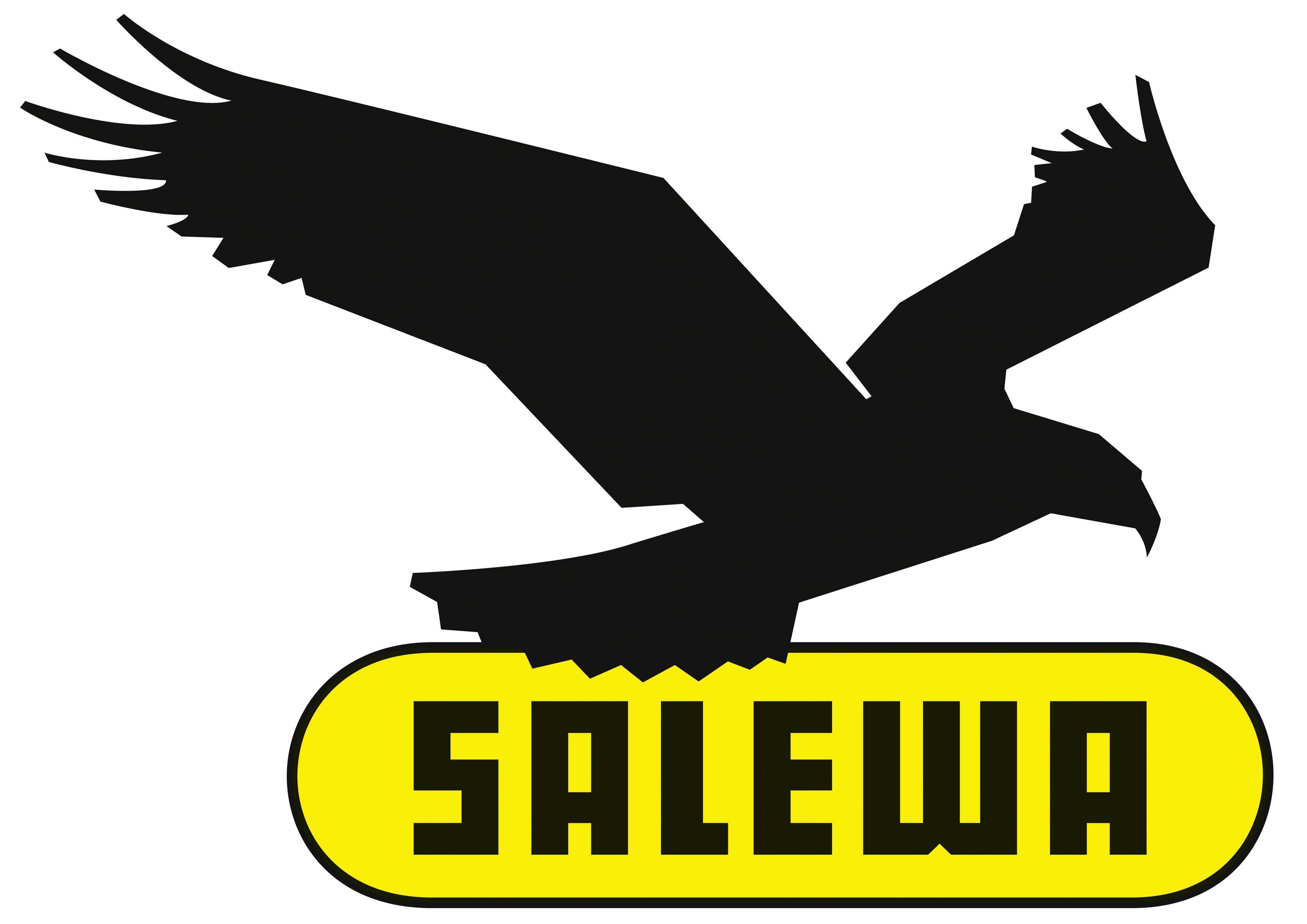 Salewa Aguille Step-in